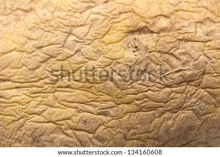 old potato as background. macro - stock photo