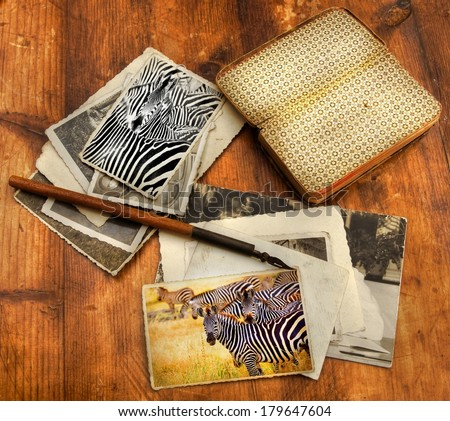 old processed image from a wooden desk filled with vintage objects and old photo's from a safari in Africa showing a zebra on two of the images  - stock photo