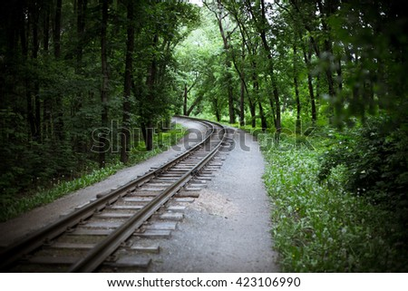 Old railway in the forest