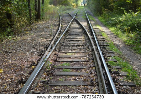 Old railway tracks in autumn forest