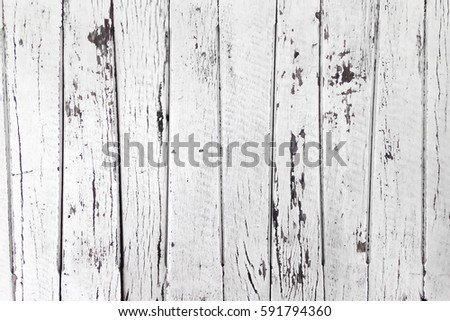 Old raw sliced wood with peel white painting background