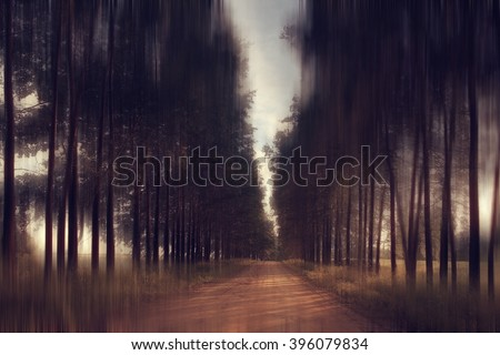 old road on the ranch - stock photo