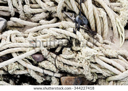 Old rope tangled with seaweed and pebbles on a beach - stock photo