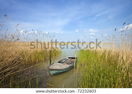 old rowing boat among the reeds