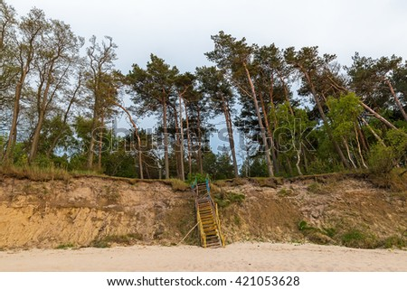 Old ruined stairs at the sandy ridge overgrown with tall pine trees - stock photo