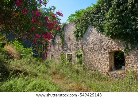 Old ruined verdusous fortress in Montenegro. Abandoned garden with stone house.