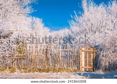 Old rustic fence in a winter wood covered with hoar frost - stock photo