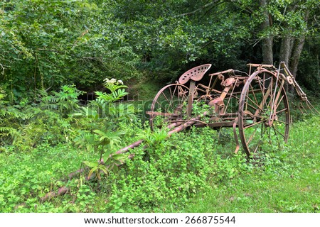 Old rusty overgrown horse drawn hay tedder - stock photo