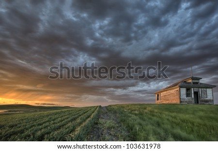 Old School house and sunset durum wheat field