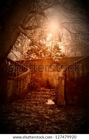 old staircase in a garden. back light shot. - stock photo