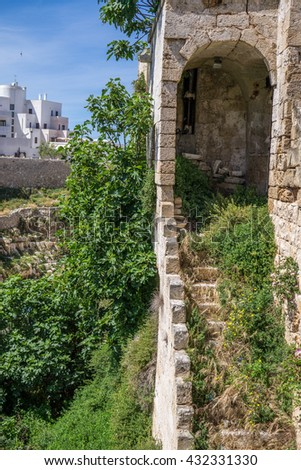 Old stairs and surrounding vegetation. Medieval architecture in Polignano a Mare, Italy