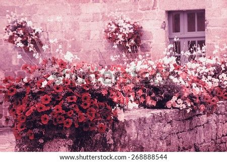 Old stone house decorated with colorful petunia flowers in medieval town. Brittany, France. Toned photo. - stock photo