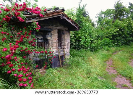 old stone oven with roses