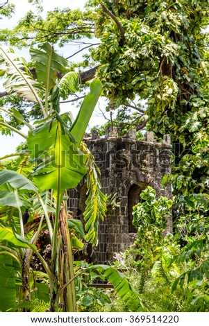 Old stone ruins in a tropical rain forest