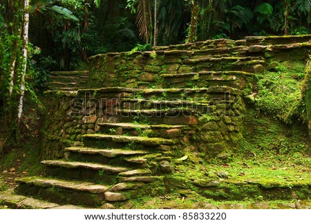 Old stone stairs leading to a terrace in Ciudad Perdida, built by the people of Tayrona. This archaeological site is close to Santa Marta in Northern Colombia. - stock photo