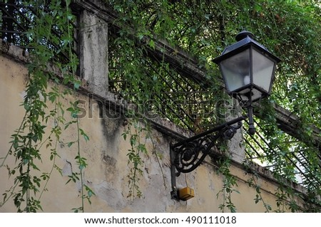 Old street lamp with a balcony and climbing plant.