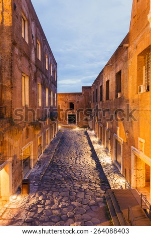 old street via Biberatica, in the light of lanterns at night in Rome, Italy