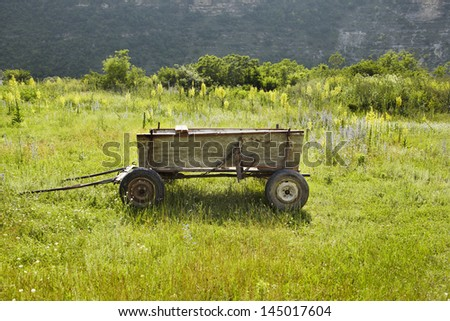 Old style wooden wagon on the green meadow