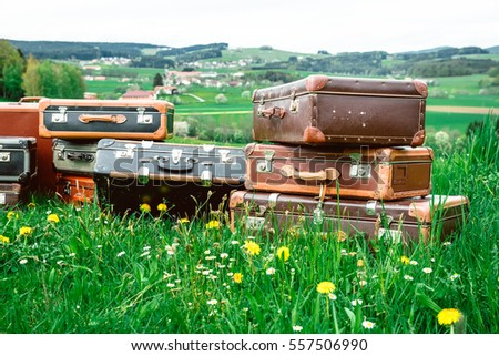Old suitcases in the grass, preparing for the journey