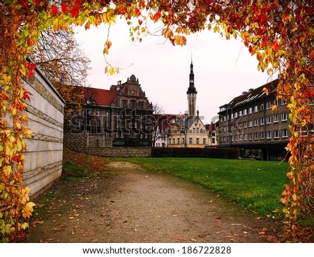 Old Tallinn, Estonia, Europe (view through the arch of autumn foliage) - stock photo