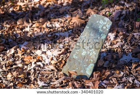 Old Tombstone in Autumn Leaves