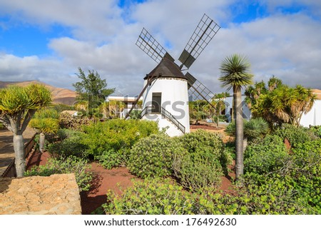 Old traditional built in canary style windmill in Antigua village and tropical garden, Fuerteventura, Canary Islands, Spain - stock photo