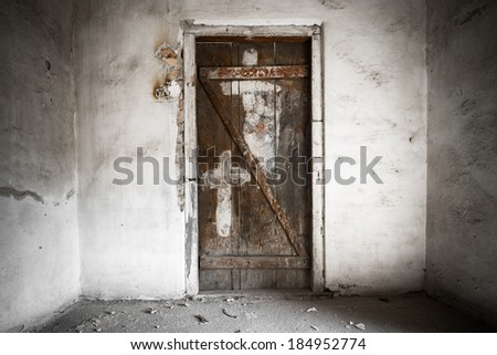 old tree door - stock photo