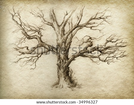 Old tree. Made by pencil on paper.