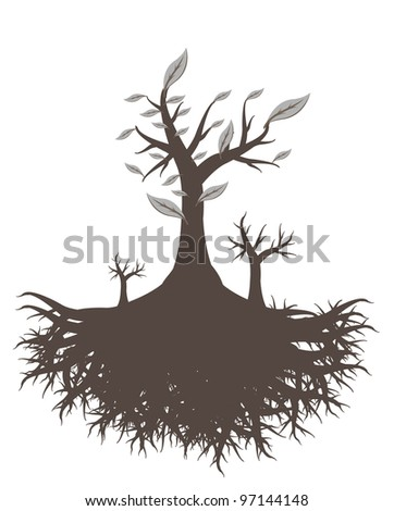 old tree root - stock photo