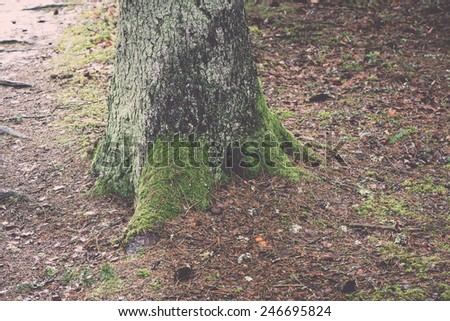 old tree trunk with green moss and bark in winter on snovy background - vintage retro effect - stock photo