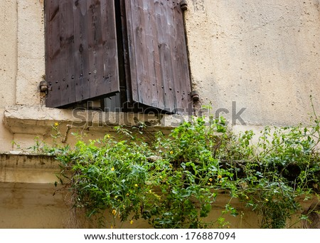 Old typical Mediterranean house exterior with weathered brown wooden shutters and beige stucco wall with peeling paint. Abandoned old house overgrown with green weeds and yellow flowers. Decay concept - stock photo