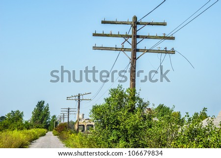 Old Utility Poles with Insulators and Loose Wires