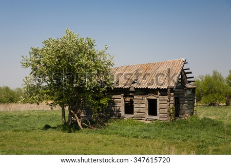 Old village house apple blossoms