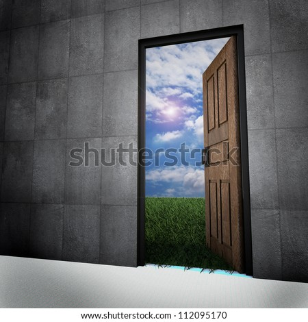 Old vintage door to new world, door opened in grass to a nice sky background with white clouds - stock photo
