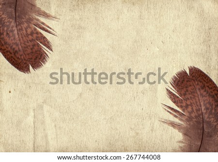Old vintage paper texture background with dark feather  - stock photo