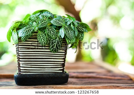 Old Vintage pot on old rustic wood table - stock photo