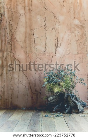 old wall background and flower - stock photo