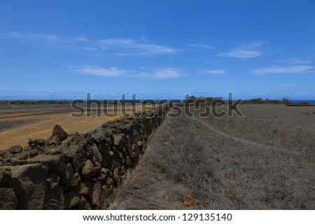 Old wall made of volcanic rocks begins to oxidize at south point park in Hawaii - stock photo