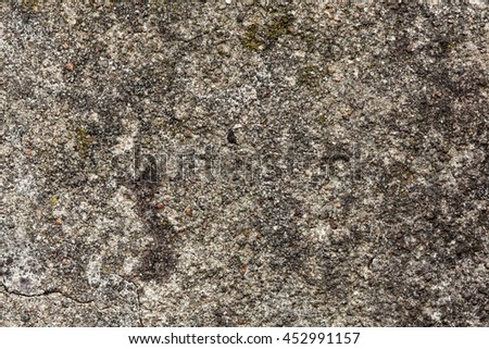 Old Wall Partly Covered With Lichen, Texture Background