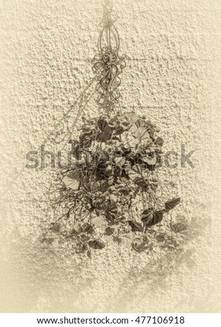 Old wall with flowers (stylized retro)