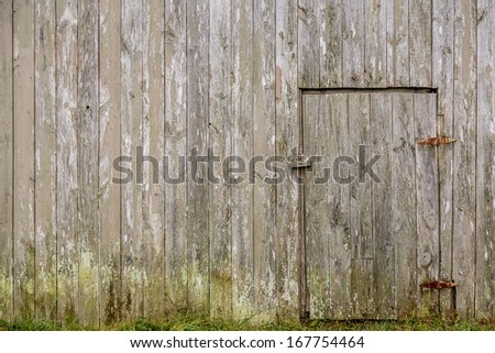 Old weathered barn wood wall with closed access door and grassy mossy bottom - stock photo