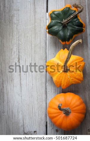 Old weathered wood table with a beautiful gourd/pumpkin. Copy space