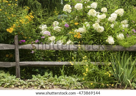 Old weathered wooden fence and lush flower vegetation as natural background