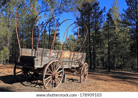 Old western frontier wagon parked in the forest