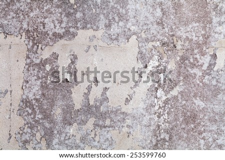 Old white concrete wall. Paint peeling off the walls , old and fungus. - stock photo