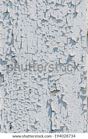 Old White Cracked Paint on Blue Wall