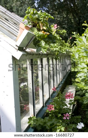 Old white greenhouse with plants on the roof