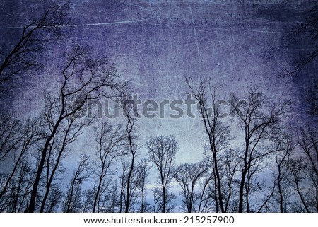 Old withered trees in the dark on grungy background - stock photo