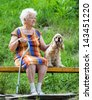 Old woman and her dog sitting on a park bench - stock photo