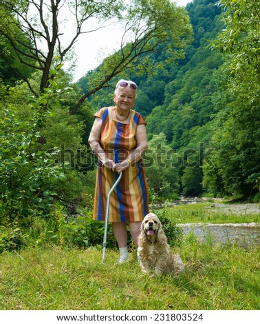 Old woman walking in summer park with a dog - stock photo